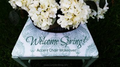 WElcome spring accent chair