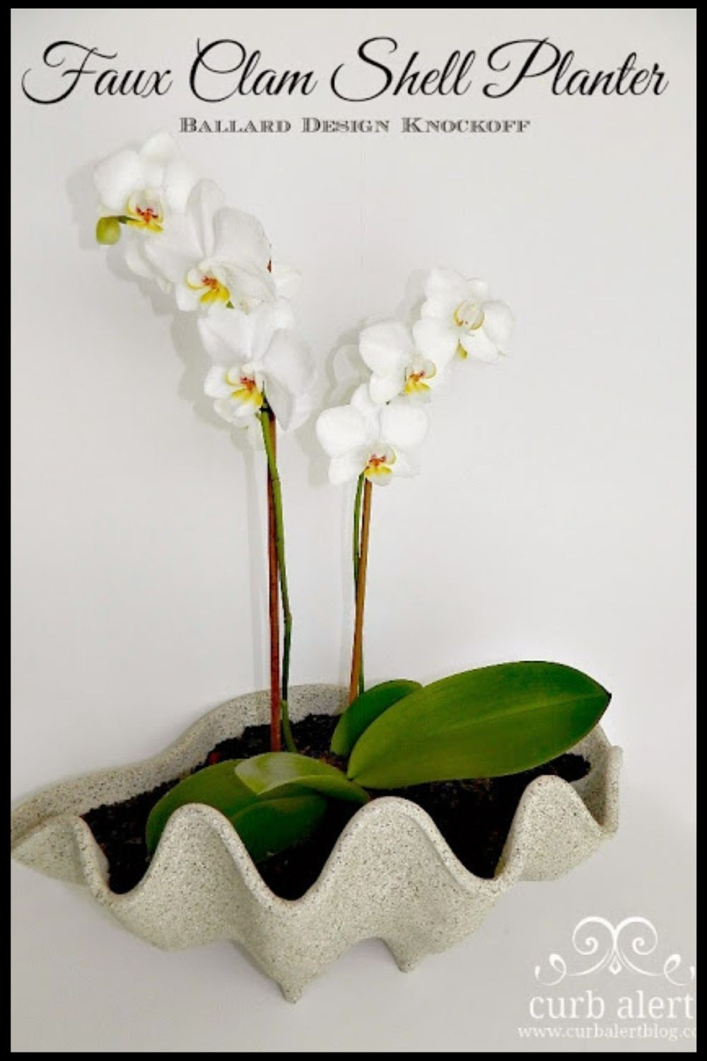 Faux clam shell planter